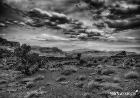 Soft Glow on the Red Dirt BW by mjohanson
