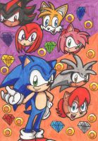 Sonic and Friends:Rivals by Piplup88908