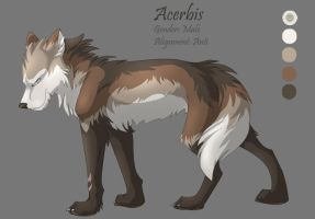 Character Sheet 13 - Acerbis by Kiarei-star