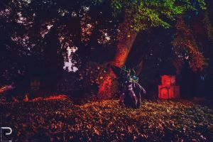 The Warden - Maiev Shadowsong Cosplay by emilyrosa