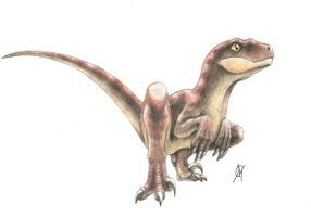 baby raptor by VyToR