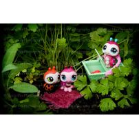 Picnic In The Parsley Patch by tracieteephotography