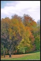 autumn corner by Iulian-dA-gallery