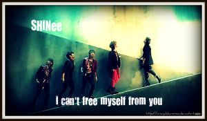 SHINee - I can't free... by AriNayu