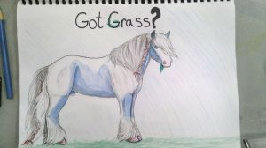 Got Grass.. by patchesofheaven74
