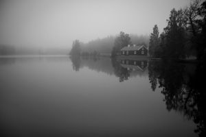 in the mist BW by Sjodin