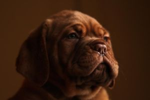 Tiny Mr. Wrinkle by SaNNaS
