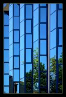 Blue Mirrors And Green by skarzynscy