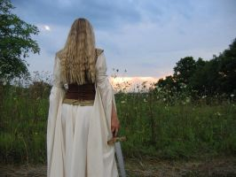 Back of the Shieldmaiden Gown by ThreeRingCinema