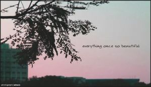 Once so beautiful by winsons
