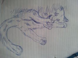 math sucks so i sketch purty cougah. by Allixi