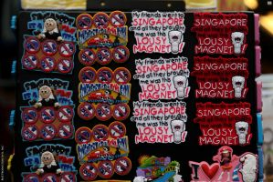 Fridge Magnets by 1301232