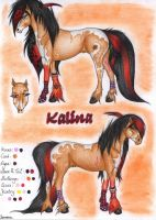 Reference Sheet Kalina by viviwonda