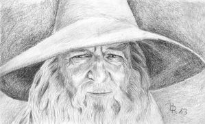 Gandalf by LoonaLucy