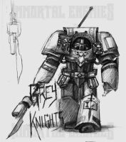 IE: Grey Knight Concept by tacticangel