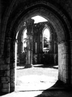Abbey ruins by spiderkazz