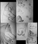 OC anthro head sketches 3 by Dr-Pen