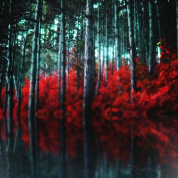 Red Water by anaPhenix