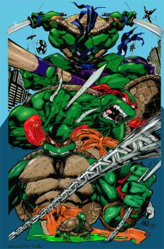 TMNT Coloured. by Highlander0423