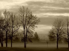 Foggy Morning by Vamaena