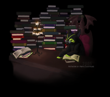 -The Library- by Lachtaube