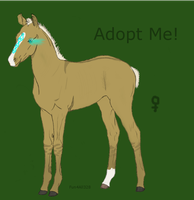 Special Adoptable by ReeseS8