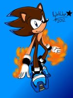 Kyle The Hedgehog 2 by kyleultra128