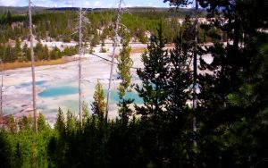 Norris  Geyser Basin Overlook by SunfallE