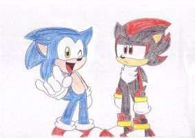 Sonic and Shad by LeniProduction