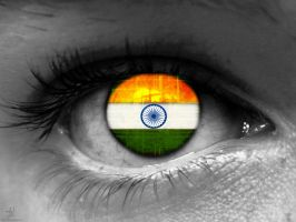 Indian Flag by mskumar