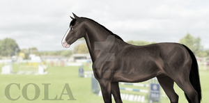 Hanoverian paint practice by FernGaze