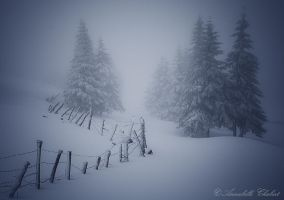 Lost by Annabelle-Chabert
