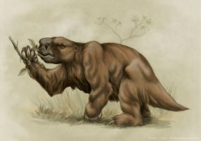 Glossotherium by rfcunha