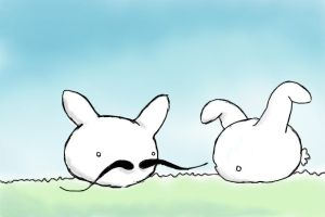 rabbits cannot grow mustaches by asecondself