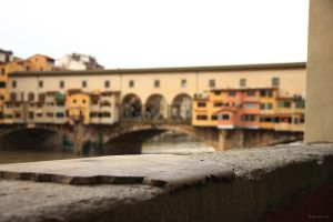 Firenze, Italy IV by LPeregrinus