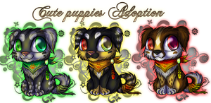 Cute puppy adoption *CLOSED* by kot-k