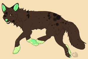 Offer Adoptable end by Naeezadopts