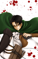 Levi by DarkMuse112