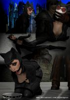 Entry One - Catwoman by alyxcaptor
