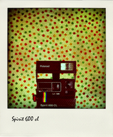 Polaroid spirit 600 cl by susanneloland