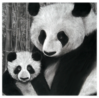 Pandas with Charcoal by Catatouillee
