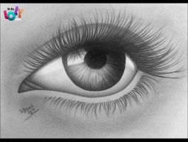 Realistic eye by OrchidGrpahics
