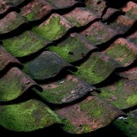 Just an old roof by Rob1962
