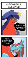 PKMN: A Powerful Alliance by tersinc