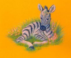 A little zebra by jkBunny