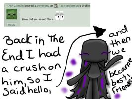 Q33 by ask-enderman