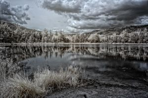 IR New Hampshire by 3whiteroses
