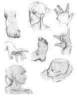 Life Drawing. Heads Hands Feet by Sorren-Chan