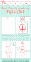 .:BASIC FEMALE ANATOMY TUTORIAL:. by Sam-Coates