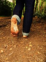 Barefoot forest walk 4 by PhilsPictures